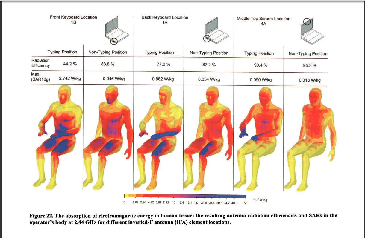 Absorbtion of Electromagnetic Energy in Human Tissue -- Gutterman 2009
